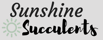 logo for Sunshine Succulents